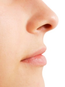06-woman-profile-nose-lips-lgn