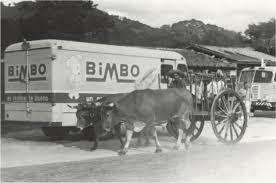 Historia Bimbo
